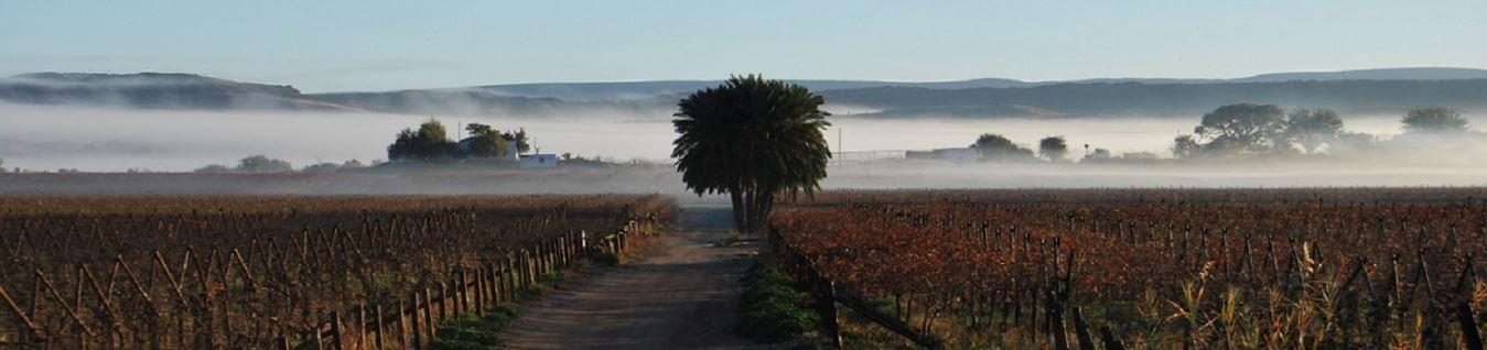 Image result for die mas boerdery images